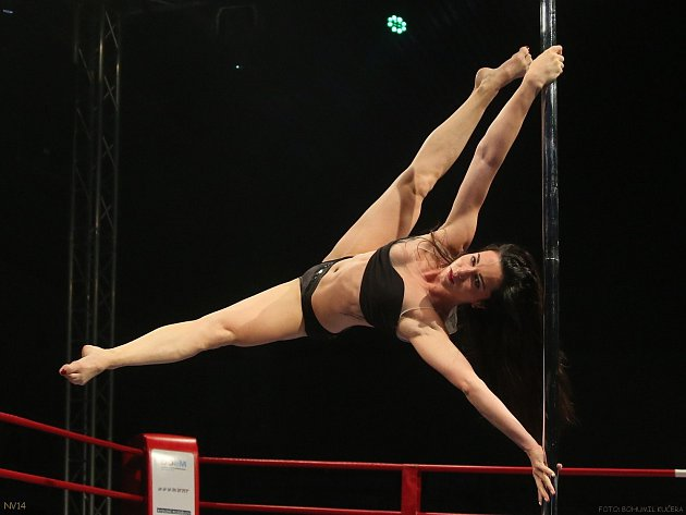 POLE DANCY